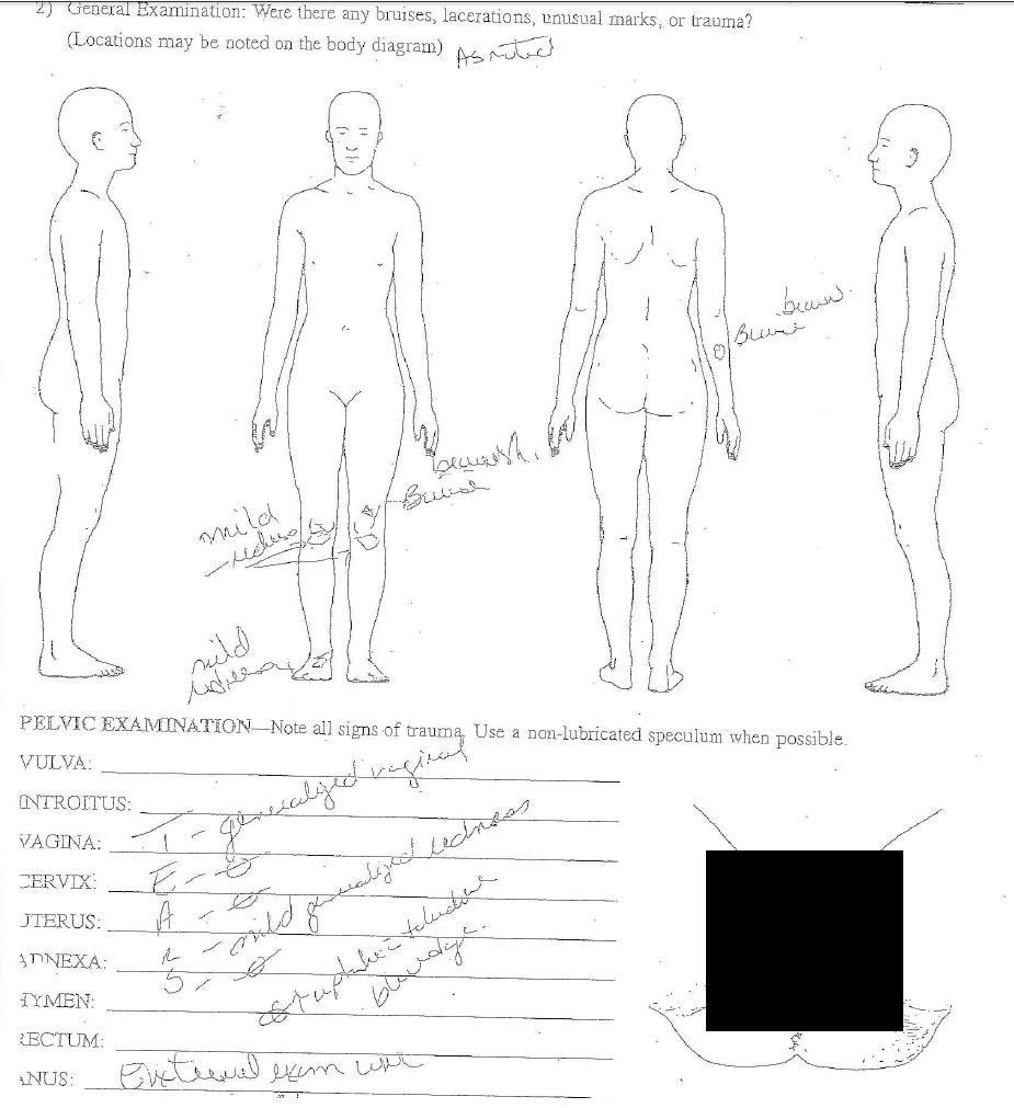 jameis winston  u2013 chapter 3  u2013 sexual assault accusation